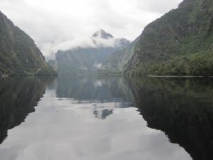 doubtful sound (28).jpg